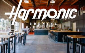 Harmonic_Space+Logo